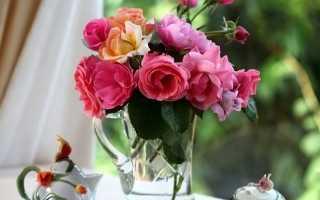 В какой воде держать розы