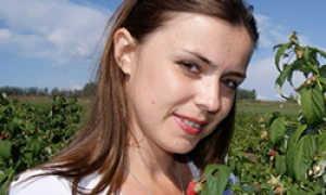 Как посадить и вырастить саженцы садовой черники