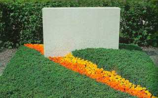 Какие цветы посадить на кладбище, чтобы они цвели, многолетние цветы с фото и названиями