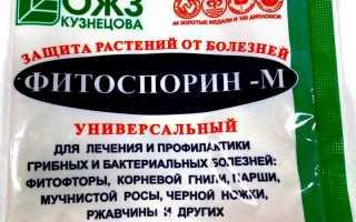 Препарат Фитоспорин-М: применение для комнатных растений, отзывы