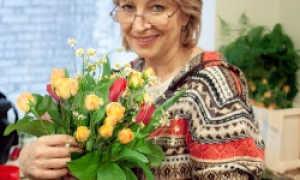 Гранат (Punica granatum). Выращивание и уход в домашних условиях.