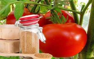 Как подкормить дрожжами овощи, ягоды и цветы Рецепты подкормок дрожжами Как приготовить
