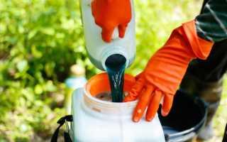 Бордосская жидкость применение в садоводстве весной и летом