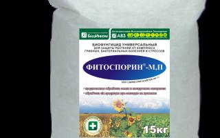 Виды и формы выпуска препарата «Фитоспорин-М»