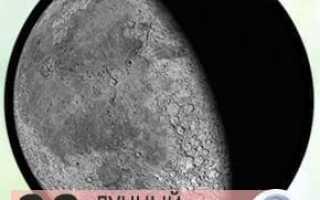 Лунный календарь садовода на 11 августа 2020 года